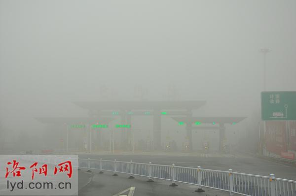 大雾天气,洛阳这些高速路段临时封闭
